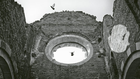 Photo:  The guardians of Basilica Arača
