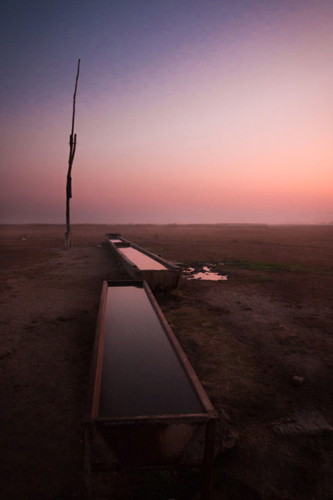 Photo: Dawn at Kopovo